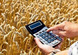 Суд Кургана рассмотрит уголовное дело о хищении сельхоз субсидий на 220 миллионов