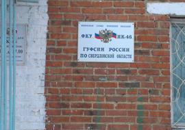 Прокуратура подключилась к массовой голодовке в ИК №46 Невьянска