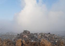 Экологи заявили об усилении пожара на Шуховском полигоне ТКО под Курганом