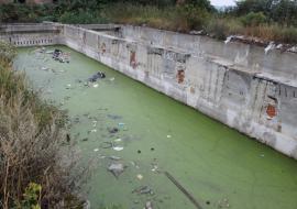 В Аргаяше начнут проектирование коллектора после загрязнения озера