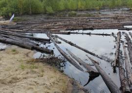Экологи Югры запросили отчет о рекультивации земель после нефтеразливов