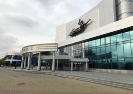 Тушин призвал исключить истерию вокруг фильма «Матильда»