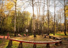 ОНФ планирует создать вокруг Екатеринбурга «зеленый щит» из 14 лесопарков