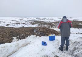 Прокуратура проверит «Птицефабрику Среднеуральская» из-за свалки помета в районе Режа