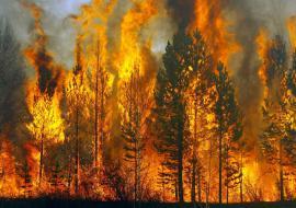 Уральскую авиалесоохрану перебросили на ликвидацию пожаров в Красноярском крае
