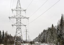 АО «Ямалкоммунэнерго» отчиталось об объемах полезного отпуска и закупках электроэнергии за январь
