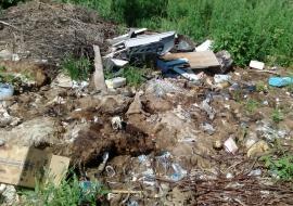 ОНФ выявил свалку трупов животных в Курганской области