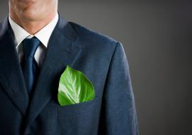 Дубровский понудит крупный бизнес к защите окружающей среды