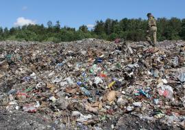 Свердловская ферма завалила отходами гектар леса