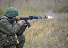 В Курганской области пограничники пресекли контрабанду оружия в Казахстан