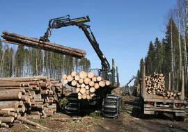Предприниматели Югры задолжали в бюджет РФ 97 миллионов