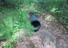 Мэрия Тюменского района заявила о согласовании сброса неочищенных стоков в реку Ушаковка