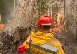 Авиалесоохрана в июле ожидает крупные лесные пожары на Урале