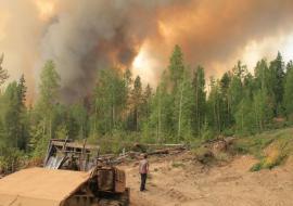 Площадь лесных пожаров в ХМАО выросла на 75%
