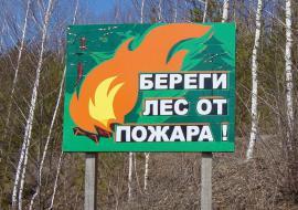 Дубровский закрыл пожароопасный сезон в Челябинской области