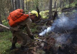 В ЯНАО ликвидировали 32 лесных пожара