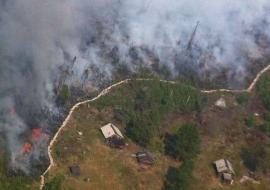 Лесные пожары охватили 5 районов ЯНАО