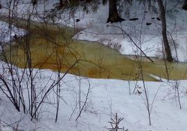 Администрация Полевского проверит загрязнение реки Светлой