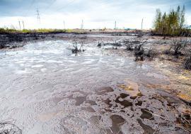 Ущерб экологии ЯНАО от нефтеразливов составил 346 миллионов