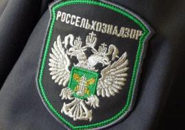 Свердловский Россельхознадзор возглавил выходец из Министерства АПК