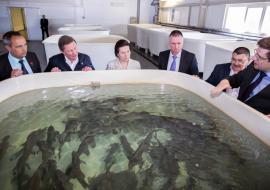 Представитель Путина и Комарова проинспектировали «Югорский рыбоводный завод»