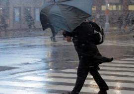 МЧС предупредило о шквалистом ветре и грозах в Свердловской области