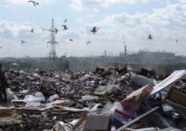 Тефтелев заявил о закрытии челябинской свалки с 11 сентября