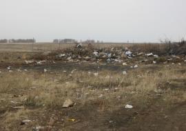 Суд наказал челябинских чиновников за свалки на сельхозземлях
