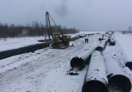 Прокуратура потребовала от структур «Газпрома» возместить ущерб лесфонду ЯНАО