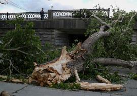 В Свердловской области после урагана восстановлено электроснабжение 14 из 23 муниципалитетов