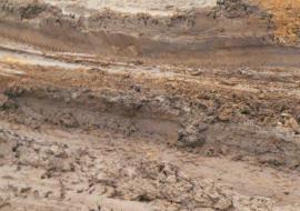 Россельхознадзор выявил масштабное уничтожение плодородных земель в ЯНАО