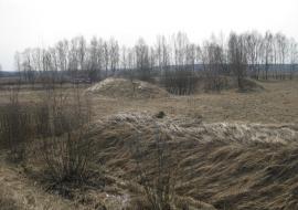 Суд оштрафовал тюменское предприятие АПК за брошенные сельхозугодья