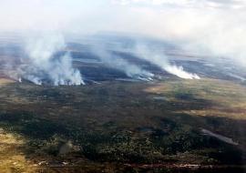 На Ямале ликвидированы пожары на 5 тысячах гектаров