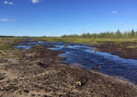 «Дочек» «Сургутнефтегаза» заподозрили в сокрытии разлива нефти