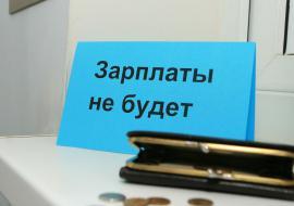Челябинское предприятие оставило без зарплат 488 сотрудников