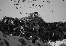 «Полигон ТБО» и правительство Текслера ждет новый суд