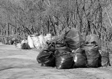 Екатеринбург отказался платить за вывоз мусора