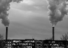 Мусорную реформу направили в дым при поддержке Кобылкина и Бурматова