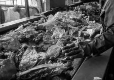 Мэрия Среднеуральска добивается закрытия завода по переработке пластика на берегу озера Исетское. Под угрозой – доходы семьи главы города