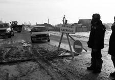 Карантинные мероприятия в Шорохово во время вспышки АЧС
