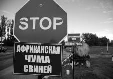 Фото: freesmi.by