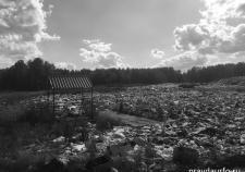 Свердловская оппозиция использовала мусор в политической войне
