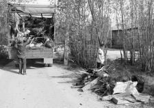 Общественники нашли золотое дно «Югры-Экологии»