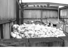 В Курганской области потеряли тонны сверхопасных отходов
