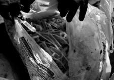 Опасные медотходы привели прокуратуру в промзону Надыма