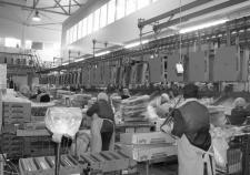 Птицефабрика «Рефтинская» закроет дыры в бюджете активами «Агентства по развитию рынка продовольствия»