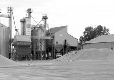 Курганские производители зерна уходят на «серый» рынок