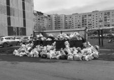 Курганский регоператор ТКО отдал 750 миллионов «Компании Экосистема» без торгов