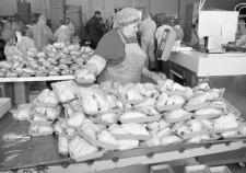 Новые очистные Косилова в стоках «Среднеуральской» сохранили опасные вещества