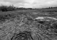 Экологи ХМАО раскопали нелегальное шламохранилище под Мегионом